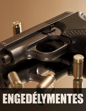 Reintex fegyver és lőszer bolt