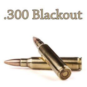 .300 Blackout